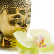 Stock Photo: Buddha head