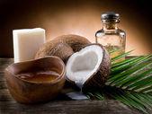 óleo de coco natural nogueira — Foto Stock