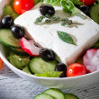 Feta traditional greek cheese and greek salad — Stock Photo #6434155