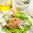 Stock Photo: Tuna salad
