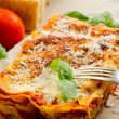 Italian lasagne with ragout — Stock Photo #6438040