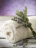 Towel with lavender, spa concept — Foto Stock