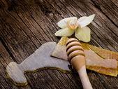 蜂蜜蜂蜡和花 — 图库照片