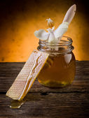 Honey with beeswax and flower — Stockfoto