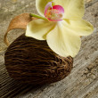 Stock Photo: Scented potpourri aromatherapy and spconcept