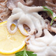 Little octopus with ingredients - Stock Photo