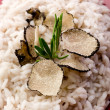 Rice with truffle over red dish — Стоковое фото