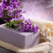 Stock Photo: Natural flower soap with scrub sponge spconcept