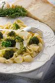 Orecchiette with broccoli on dish — Stock Photo