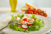Green salad with chicken and radish — Stock Photo