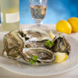 Royalty-Free Stock Photo: Fresh french oyster