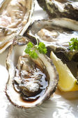 Fresh french oyster — Stock Photo