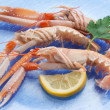 Norway lobster with ingredients ready to cooking - Stock Photo