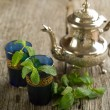 Stock Photo: Moroccmint tea
