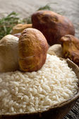 Raw rice and cep mushroom — Stockfoto