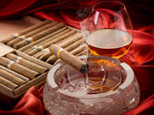 Cuban cigar and liquor over the ash tray — Stock Photo