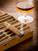 Cuban cigar and glass of liquor on wood background — Stock Photo