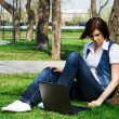 Stock Photo: Young woman working on laptop