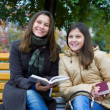 Two young girls reading a book - Stock Photo