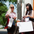 Two young women with shopping bags — Stock Photo #6217852