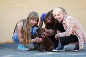 Tienermeisjes met een puppy — Stockfoto