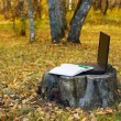 Laptop on the stump — Stock Photo