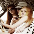 Stock Photo: Young friends driving retro car