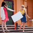Two young women with shopping bags on the steps - ストック写真