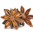 Star Anise Spice Group on white — Stock Photo