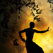 Spiritual Martial Arts Sunset - Stock Photo