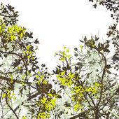 Flower Art Digital Painting Background — Stock Photo