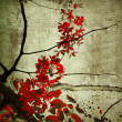Red Blossom and Branches - Stock Photo
