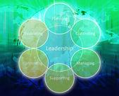 Leadership management diagram — Stock Photo