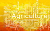 Agriculture word cloud — Stock Photo