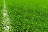 White line on soccer field — Stock Photo