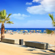 Beaches, coast in Spain . — Stock Photo #6215708