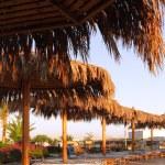 Early morning near the pool. Sunrise. — Stock Photo #6234170