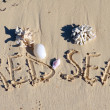"Stock Photo: Inscription ""Red Se"" on sand with shells n beach."