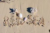 "Inscription ""Red Sea "" on a sand with shells n a beach. — Stock Photo"