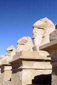 El templo de karnak complejo, luxor, egipto. — Foto de Stock