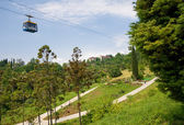 Funicular in tropical park Arboretum , Sochi city — Stock Photo