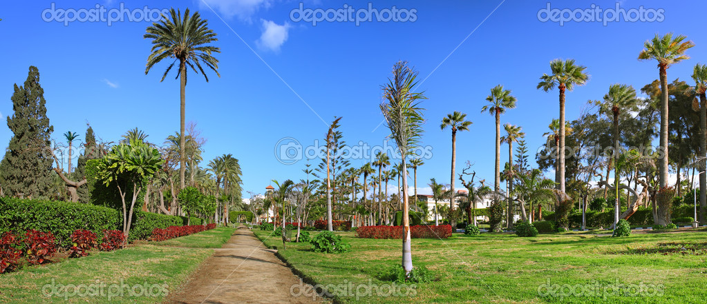 Дворец и парк Монтаза