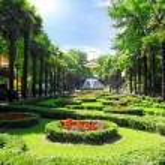 Park Riviera in Sochi city — Stock Photo #6243676