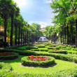 Stock Photo: Park Rivierin Sochi city