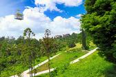Funicular in tropical park Arboretum , Sochi city — Stock Photo