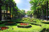 Park Riviera in Sochi city — Stock Photo