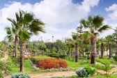Royal park montazah, alexandria. ägypten. — Stockfoto