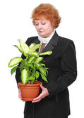 Friendly senior woman with house plant, flowers — Stock Photo