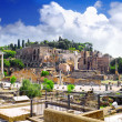 Roman forum in Rome, Italy. - Stock Photo