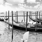 Gondolas near Doge's Palace, Venice — Stock Photo #6360990